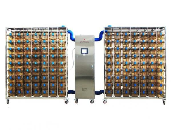 实验动物IVC独立通风笼具鼠盒系统价格优惠