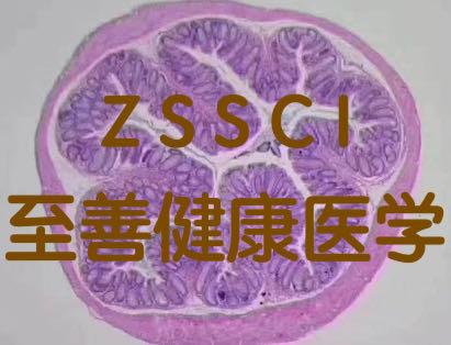 分子生物医学科研实验外包技术服务