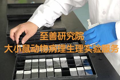 【推荐大小鼠行为学水迷宫Y迷宫矿场动物实验外包技术服务】